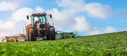 Gyrobroyeur agricole